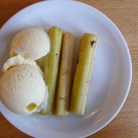 Rabarbra sous vide med vaniljeis